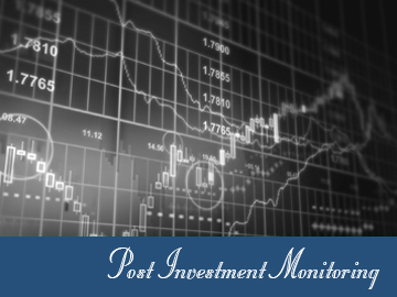 post investment monitoring